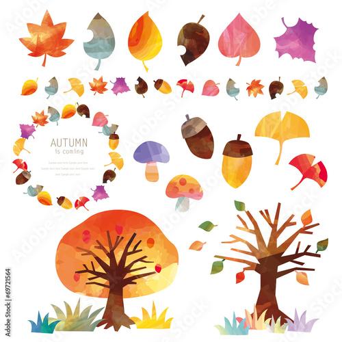 秋 の 自然 素材