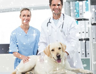 Composite image of veterinarians with dog in clinic