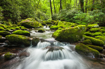 Roaring Fork Great Smoky Mountains National Park