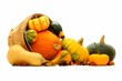 Group of autumn squash and pumpkins spilling from a harvest pail