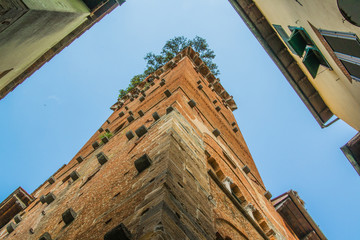 Tower with garden on the top