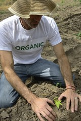 organic farmer planting