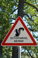 "Precautionary sign ""Carefully, squirrels!"""