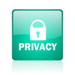 privacy internet icon