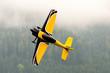 Leinwanddruck Bild - Flugzeug – Modellflugzeug - Tiefdecker