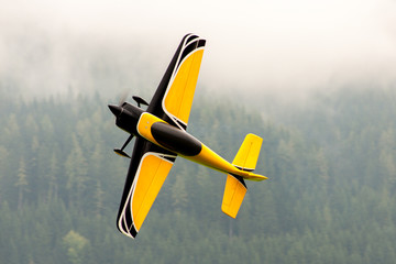 Flugzeug – Modellflugzeug - Tiefdecker