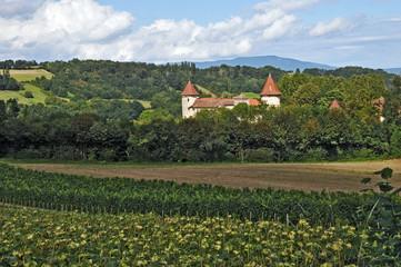 Vignieau, Chateau Chapeau Cornu - Rodano Alpi