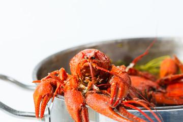 Boiled crayfish in pan