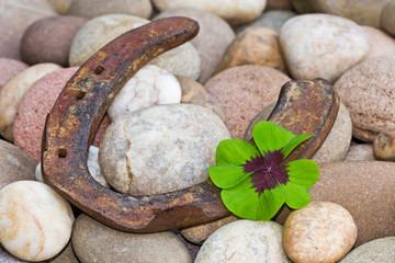 vierblättriges Kleeblatt und Hufeisen auf Steinen