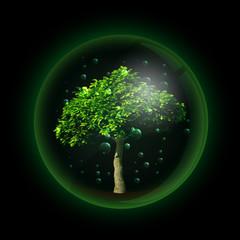 Tree in glass ball retort. Vector