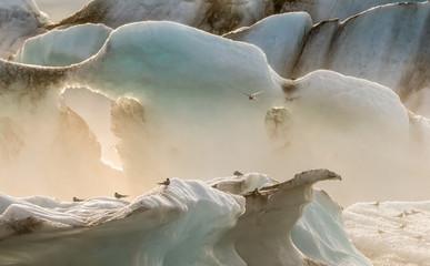 Gletschersee - Island