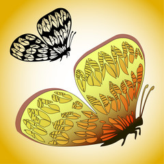 Exotic butterfly illustration and vector silhouette