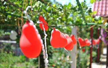 Red balloons flying outdoors. Balloons hanging in garden