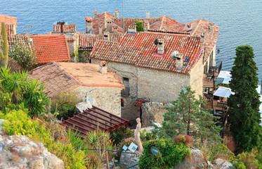 Exotic garden in Eze village, French Riviera