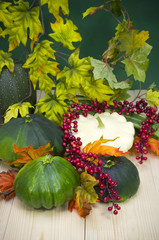 Autumn decoration of  squash