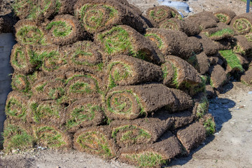 Pile of sod rolls 2