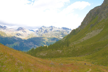 Mountain path, reaching for Grand Tournalin, Val D'Ayas - Alps