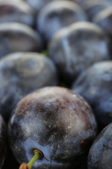 Ripe sweet plums, close up