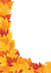 Vector autumn frame with maple leaves