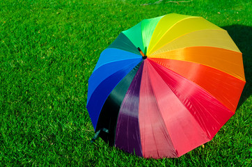 Rainbow umbrella on the grass
