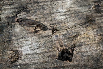 Holes on the old wood