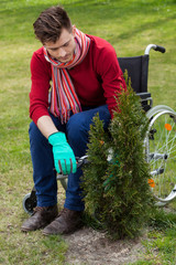 Man on wheelchair prunning plant