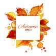 Autumn sunny watercolor square label with splashes