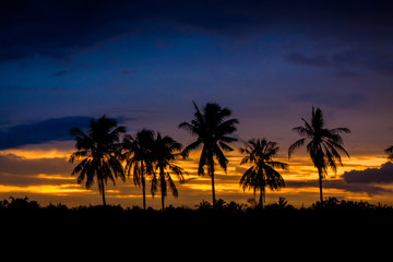 evening Landscape with Silhouette style