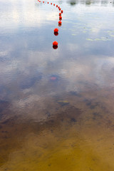 Surface of a lake with red balls