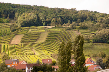 Wangen, village de la Route de Vins en Alsace