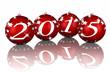 Capodanno 2015 Natale_03