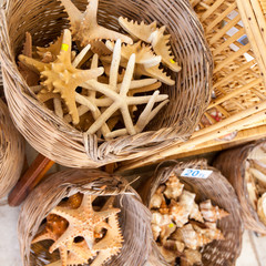 Starfish and seashells souvenirs for sale