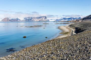 Coast beach in Spitsbergen, Arctic