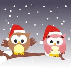 pareja de buhos navidad