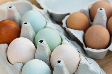 araucana and guineafowl egg still life