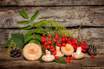Autumn still-life with mushrooms