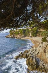 Belladona, beach at Platja d' Aro, Costa Brava, Spain