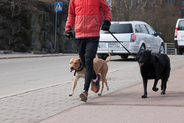 the person runs with two dogs