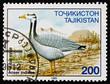 Postage stamp Tajikistan 1996 Bar-headed Goose, Bird