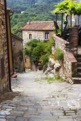 Sassetta, Tuscany. Color image