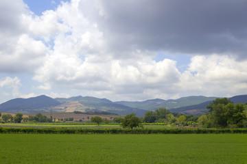 Val di Cornia panorama-Tuscany. Color image