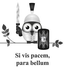 Latin quotation prepare for war