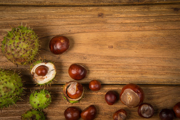Autumn chestnut  on table
