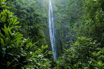Waimoku Falls