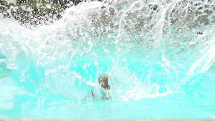 Slow Motion Sequence Of Boy Jumping Into Swimming Pool