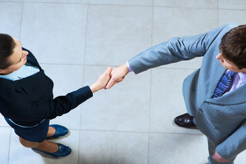 Business woman and businessman shaking hands