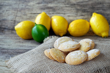 Homemade lemon cookies with powdered sugar