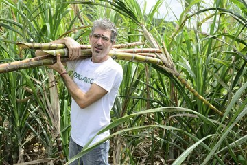 Organic farmer carrying sugar cane