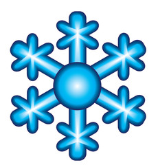 The bright snowflake
