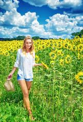 Walking on sunflowers field
